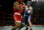 Commonwealth Games, Manchester. A boxing match. - Paul Herrmann - ,2000s,2002,aggression,aggressive,BAME,BAMEs,black,BME,bmes,boxer,boxers,boxing,boxing ring,cultural,diversity,ethnic,ethnicity,Games,group,groups,hitting,minorities,minority,mix,mixed,multi,multi cul