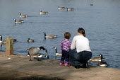 A mother and child feed the ducks and geese at an urban water park in Sale, Greater Manchester - Paul Herrmann - 18-03-2003