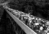 Rwandan refugees returning home over Rwanda-Tanzania border. 1996. - Howard Davies - 03-05-1996