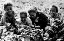 Palestinian children on their small farm near Jericho, West Bank. 1993 - Howard Davies - 01-07-1993