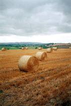 Hay bales in a field. - John Harris - 03-09-2002