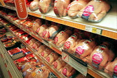 Pre packed raw chickens on refrigerated shelves in a Safeway Supermarket. There are food safety concerns over levels of salmonella bacteria in chicken products. - John Harris - 01-03-2000