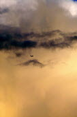 Airplane flying through rain clouds lit by a sunset - John Harris - 26-08-2005