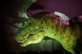 The Natural History Museum, London. The giant animatronic model of a Tyrannosaurus rex - John Harris - 29-08-2005