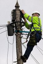 BT engineer working at a switching box up a telegraph pole. - John Harris - 17-01-2006