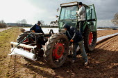 Polish migrant workers laying plastic sheeting for polytunnels to grow Asparagus using a tractor and attachment. Warwickshire - John Harris - 2000s,2005,AGRICULTURAL,agriculture,Bomfords Ltd,by hand,capitalism,capitalist,cloches,crop,crops,Diaspora,EARNINGS,eastern,EBF Economy,employment agencies,employment agency,EQUALITY,eu,european,europ