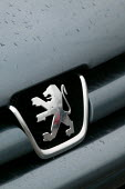 Badge on a 206. PSA Peugeot Citroen plant. The French carmaker is to close the factory with the loss of 2,300 jobs. Ryton near Coventry - John Harris - 2000s,2006,AUTO,auto industry,AUTOMOBILE,AUTOMOBILES,Automotive,capitalism,capitalist,car,Car Industry,carindustry,cars,CLOSED,closing,closure,closures,deindustrialisation,Deindustrialization,EBF Econ