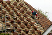 Roofer laying tiles on a new roof on a renovated house. - John Harris - 06-05-2006