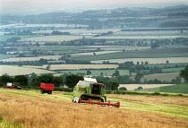 Combine Harvester harvesting wheat on a farm in Warwickshire. - John Harris - 28-07-2000