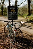 Bicycles padlocked to cycleway Hampsted Heath. - John Harris - 27-02-2001