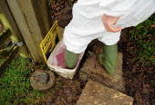 Maff Vet using a foot dip at the farm gate to disinfect wellington boots, visiting a farm to carry out an inspection, checking for symptoms of foot and mouth disease in an at risk area. - John Harris - 28-03-2001
