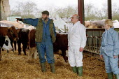 MAFF Vet and Animal Health Officer talking with a worried farmer whilst inspecting a herd of cattle for symptoms of foot and mouth disease on a farm at risk. - John Harris - 28-03-2001