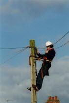 BT engineer fault finding up a telegraph pole. - John Harris - 07-03-2002
