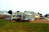Greenhouses at Horticulture Research International. HRI Wellesbourne, Warwickshire - John Harris - 13-04-2003