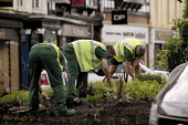 Gardeners planting in a traffic roundabout. - John Harris - 2000s,2003,and,AUTO,AUTOMOBILE,AUTOMOBILES,AUTOMOTIVE,boarder,CAR,cars,centre,council,Council Services,Council Services,ENI environmental issues,GARDEN,Gardener,Gardening,gardens,green,grow,growing,he