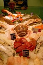 Fillets of fish on display at the fishmongers counter, Safeways Supermarket. - John Harris - 26-06-2004
