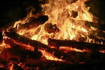 A bonfire. - John Harris - 05-11-2006