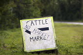 Cattle market closed after nationwide movement restrictions on livestock because of a foot and mouth outbreak. Warwickshire. - John Harris - 08-08-2007