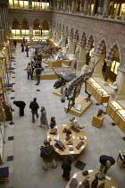 Oxford University Museum of Natural History. - John Harris - 24-11-2007