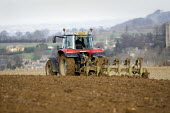 A farmworker ploughing a field on a farm in the Cotswolds. - John Harris - 2000s,2009,agricultural,agriculture,capitalism,capitalist,Cotswold Hills,Cotswolds,country,countryside,driver,drivers,driving,EBF Economy,farm,Farm Worker,farm workers,farmed,farmer,farmers,farmhand,f