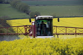 Farmworker spraying oilseed rape with insecticide and fungicide chemicals. Welland Valley, Harringworth, Northamptonshire. - John Harris - 2000s,2009,agricultural,agriculture,agrochemicals,application,capitalism,capitalist,country,countryside,crop,crops,driver,drivers,driving,EBF,EBF Economy,Economic,Economy,eni,eni environmental issues,