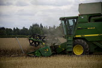 Combine harvester driver beginning the oilseed rape harvest. Warwickshire. - John Harris - 20-07-2009