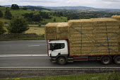 A heavily loaded lorry carrying straw bales braking hard as descends a steep hill in the Cotswolds - John Harris - 2000s,2009,agricultural,agriculture,bale,bales,capitalism,capitalist,carries,carry,carrying,Cotswold Hills,Cotswolds,country,countryside,crop,crops,driver,drivers,driving,EBF,Economic,Economy,employee