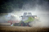 Combine harvester cutting wheat, Rutland. - John Harris - 2000s,2009,agricultural,agriculture,capitalism,capitalist,cereal crop,Combine Harvester,conditions,crop,crops,cutting,driver,drivers,driving,EBF,Economic,Economy,employee,employees,Employment,farm,Far