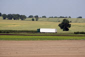 A refrigerated lorry carrying lettuces from a farm in Warwickshire - John Harris - 28-06-2010