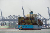 The Maersk Baltimore container ship docking at the port of Felixstowe, the cargo is from China. A tug is helping to manoeuvre the vessel into dock, Suffolk - John Harris - 19-05-2011
