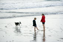 Children on the beach with their pet dog. Llangranog, Wales - John Harris - 2010s,2011,animal,animals,beach,beaches,boy,boys,canine,child,CHILDHOOD,children,COAST,coastal,coasts,dog,dogs,female,females,girl,girls,holiday,holiday maker,holiday makers,holidaymaker,holidaymakers