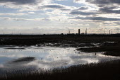 Waders on Frodsham Marsh, Runcorn, chemical works on the horizon - John Harris - 12-03-2013