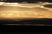Sunset over the Manchester ship canal, Frodsham Marsh, Runcorn - John Harris - 12-03-2013