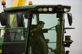 Harvester driver adjusting the controls in his cab. Silage making on a farm, Wormleighton, Warwickshire - John Harris - 22-05-2012
