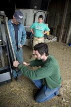 Repairing a JCB wheeled loading shovel. Silage making on a farm, Wormleighton, Warwickshire - John Harris - 22-05-2012