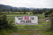 Banners in the Vyrnwy valley. Protest by Montgomeryshire Against Pylons at the preferred routes selected to connect wind farms to the National Grid wil entail a 400,000-volt line will run from a subst... - John Harris - 08-08-2012