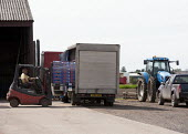 Loading salad vegetables into a van using a forklift truck at a packing house, Lancashire - John Harris - 2010s,2013,agricultural,agriculture,capitalism,capitalist,EARNINGS,EBF,Economic,Economy,employee,employees,Employment,EQUALITY,FARM,Farm Worker,farm workers,farmed,farmer,farmers,farmhand,farmhands,fa