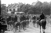 Mounted police officers charge pickets who were leaving. Orgreave, Sheffield - John Harris - 1980s,1984,adult,adults,animal,animals,Battle of Orgreave,CLJ,DISPUTE,DISPUTES,domesticated ungulate,domesticated ungulates,equestrian,equine,horse,horses,INDUSTRIAL DISPUTE,mass picket,MATURE,member,