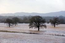 Flooded farmland around the River Severn flood plain, Worcester, Worcestershire - John Harris - 06-01-2014