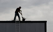 A worker clearing a industrial unit roof of debris, without a safety harness. - John Harris - 2010s,2014,building,Building Worker,buildings,clearing,Construction Industry,EBF,Economic,Economy,employee,employees,Employment,hazard,hazardous,HAZARDS,health,height,high up,job,jobs,ladder,ladders,l