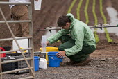 A farmworker wearing protective clothing (Waterproof Spray Suit) training in the use of a backpack Pesticide applicator, Warwickshire - John Harris - 11-07-2014