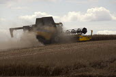 Harvesting Oilseed Rape, Warwickshire - John Harris - 2010s,2014,agricultural,agriculture,arable,capitalism,capitalist,Combine Harvester,crop,crops,dust,dusty,EBF,Economic,Economy,employee,employees,Employment,farm,farmed,farming,farmland,farms,field,fie