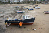 Painting and repairing a cruise boat, Mousehole harbour, Cornwall - John Harris - 24-03-2015