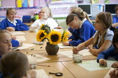 Art class, pupils drawing sunflowers. Primary school, St Richards First School, Evesham, Worcestershire - John Harris - ,2010s,2015,art,child,CHILDHOOD,children,communicating,communication,conversation,conversations,dialogue,discourse,discuss,discusses,discussing,discussion,draw,drawing,EDU,educate,educating,Education,