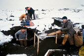 Miners riddling in the cold winter snow for coal in the pit slag heap for fuel to burn South Yorkshire. .... - John Harris - 28-01-1985
