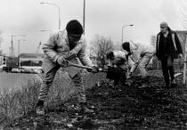 Youth digging roadside municipal planting Youth Training Scheme Birmingham - John Harris - 26-10-1991
