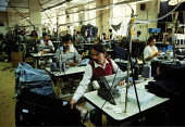 Asian women and men working in a Leicester sweatshop producing textiles. The workers have low pay and poor conditions and are not trade union members'... - John Harris - 1990s,1993,apparel,Asian,Asians,BAME,BAMEs,Black,BME,bmes,capitalism,capitalist,clothing,diversity,EARNINGS,EBF economy business,EQUALITY,ethnic,ethnicity,FACTORIES,factory,female,garment,Income,INCOM