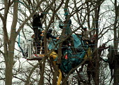 Eco warriors protesting against the building of the Newbury bypass being removed from their treetop dwellings and walkways in the forest by sheriff bailiffs - John Harris - activist,activists,against,anti,arrest,arrested,arresting,bailiff,bailiff,bailiffs,building site,bypass,CLJ,development,Eco warrior,Eco warriors,environment,environment,environmental,environmental,env