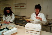 Handling samples in ADAS laboratory  ... - John Harris - 1990s,1996,Applied,female,Handling,HORTICULTURAL,Horticulture,job,jobs,LAB LBR work,people,research,samples,SCIENCE,SCIENCES,scientist,SCIENTISTS,SCT science & technology,worker,workers,working