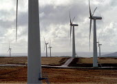 Europe's largest wind farm, near Carno in Mid-Wales. 56 turbines, each the height of Nelson's Column produce enough electricity to serve the needs of 250,000 homes at half the cost of normal domestic... - John Harris - 27-10-1996